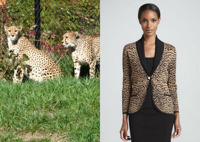 Cheap Cheetah Print Shoes